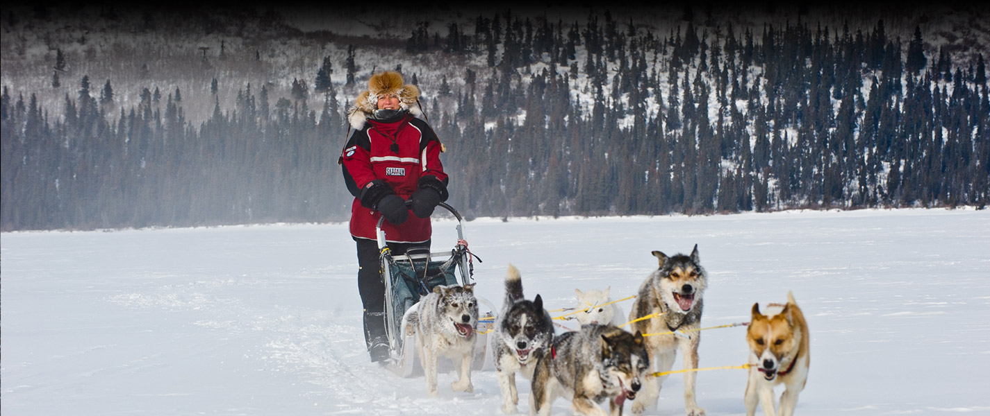 Yukon Dog Sledding