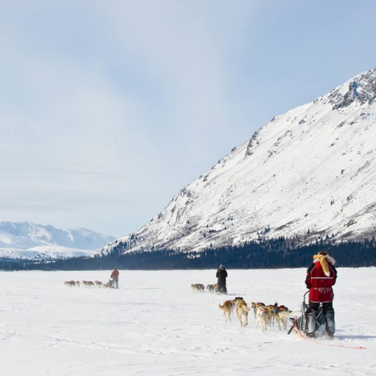 Dogsled_YTG_CathieArchbould3